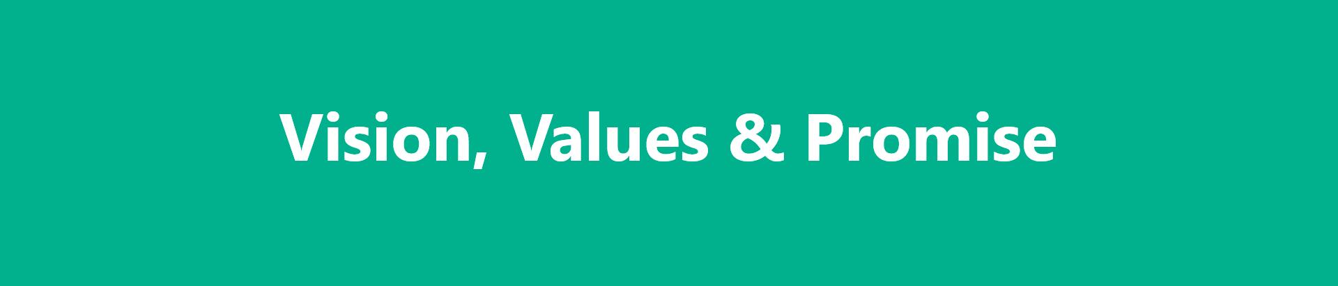 Vision-value-promise